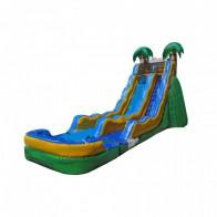 17 Tropical Wave Slide