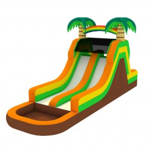 Tropical Dual Water Slide