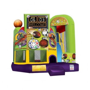 Backyard Combo Sports