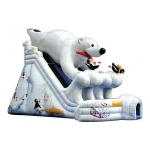 Junior Arctic Plunge